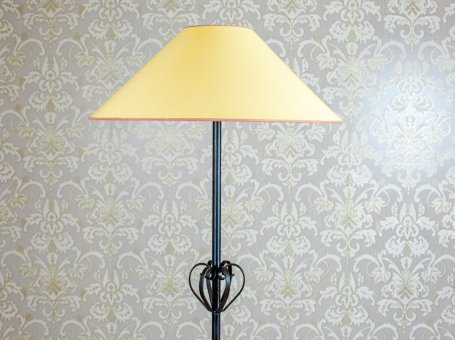 Floor Lamp with a Lampshade